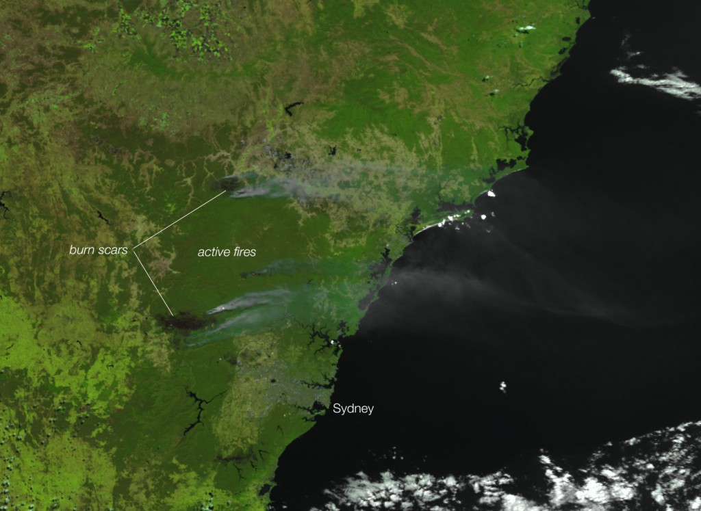 Incendios Sydney