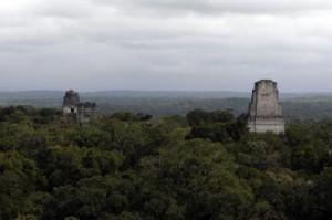 Varios templos  sobresalen de la selva en la antigua ciudad de Tikal, la más grande de las construidas por los mayas del período clásico