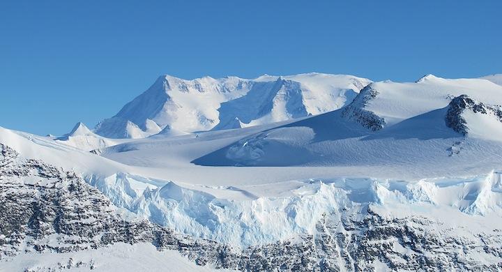 Musgo-Antartida