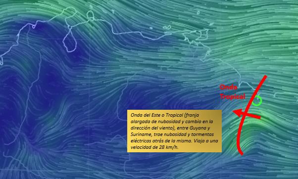 ondatropical2.jpg