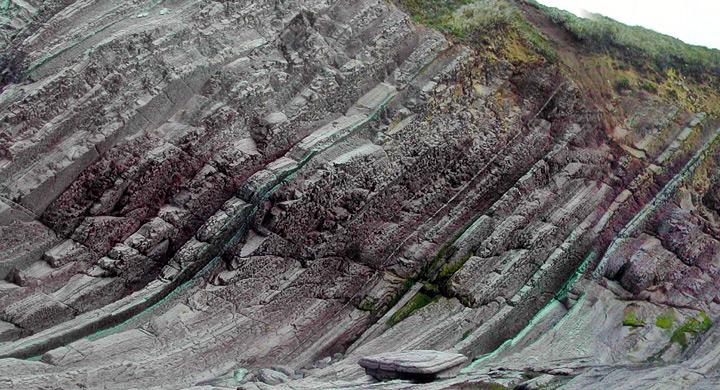 suelo_carbono