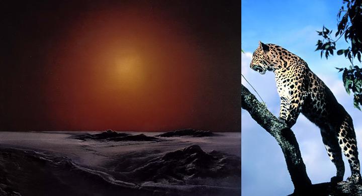 Extincion-Tierra