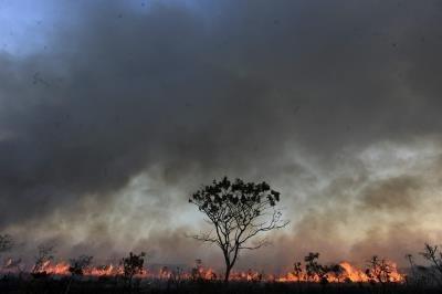 brasil_emisiones_carbono