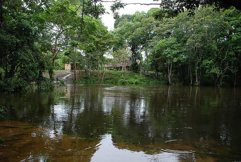 CAMBIOCLIMATICO_AMAZONAS