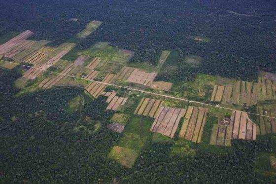 deforestacion_brasil