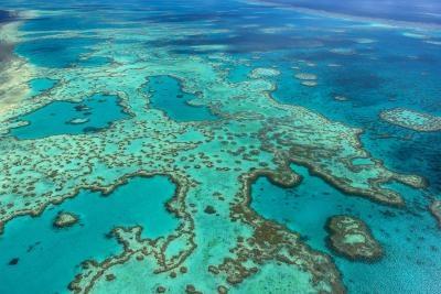 corales_australia
