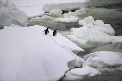 glaciar_derretido