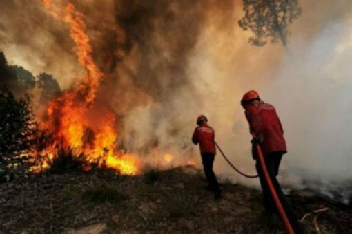 incendios_forestales._foto_el_espectador_3