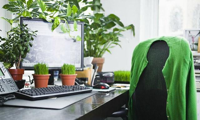 areas_verdes_oficinas