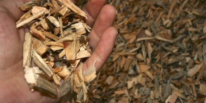 biomasa_espana